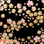 桜文 Cherry Blossom 豊作祈願・富貴