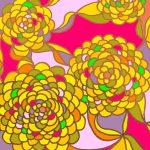 菊文 Chrysanthemum 不老不死